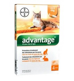 Advantage 40 Chat Lapin 4 Pipettes
