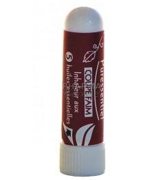 Puressentiel Coupe Faim Inhaleur aux 5 Huiles Essentielles 1ml