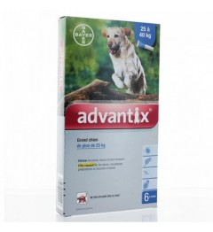 Advantix Grand Chien Spot On 6 pipettes