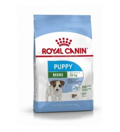 Royal Canin Chien Mini Junior 2Kg