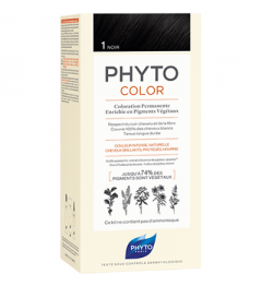 Phyto Coloration Permanente 1