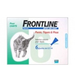 Frontline Spot On Chat 6 pipettes pas cher