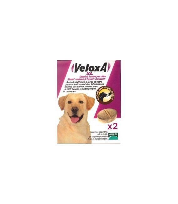 Veloxa XL Vermifuge Chien 2 Comprimés pas cher