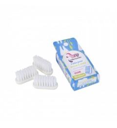 Lamazuna 3 Recharges de Brosse à Dents Médium