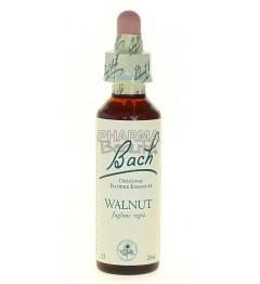 Fleurs de Bach Walnut (n°33) 20 ml pas cher